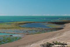 Península Valdes, paisagem, fotografia de stock royalty free