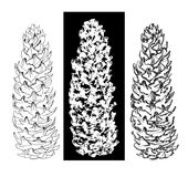 Pen and brush drawing cones collection. Pen and brush drawing tree cones set Stock Image