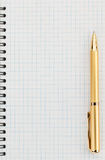 Pen and checked paper of notebook Stock Image