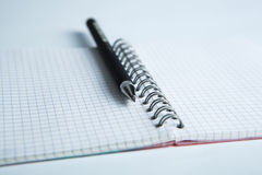 Pen on the checkered paper notebook Royalty Free Stock Image