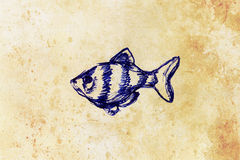 The pen drawing aquarium fish on old paper. The pencil drawing aquarium fish on old paper Stock Photography