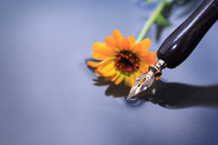 Pen And Flower Royalty Free Stock Images