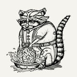 Pen and ink illustration of humanlike raccoon washing brain Royalty Free Stock Photos