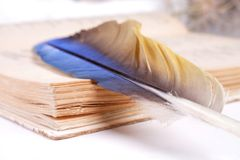 Pen and paper Royalty Free Stock Images