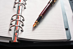 Pen on planer Royalty Free Stock Images