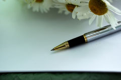 Pen, sheet of white paper and chamomile Royalty Free Stock Image
