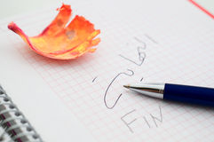 Pen writting fin Royalty Free Stock Images