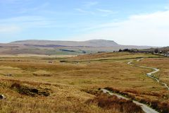 Pen-y-ghent from Batty Moss, North Yorkshire Royalty Free Stock Images