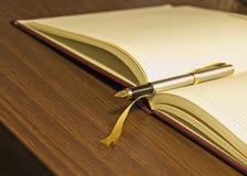 Pena & diário de fonte imagem de stock