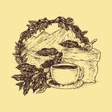 Pena darwing do conceito de projeto do coffe da imagem ilustração do vetor