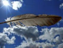 Pena de pássaro contra o céu azul fotos de stock royalty free