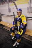 Pena del juego de hockey Imagen de archivo libre de regalías
