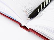 Pena e diário Imagem de Stock Royalty Free