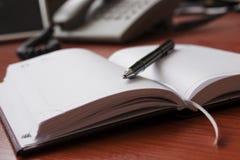 Pena e diário Foto de Stock