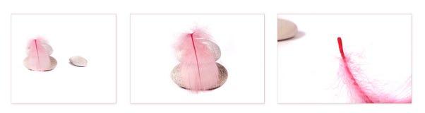 Pena e rochas cor-de-rosa fotografia de stock