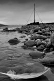 A pena flutua afastado ao mar Fotografia de Stock Royalty Free