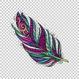 Pena nativa colorida ilustração royalty free