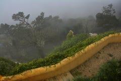 Pena Palace , Sintra Royalty Free Stock Photography