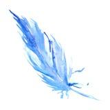 Pena rústica do pássaro ciano azul da aquarela isolada ilustração do vetor