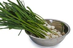 Penacho del ajo crudo para cocinar, aislado en el fondo blanco Imagen de archivo libre de regalías