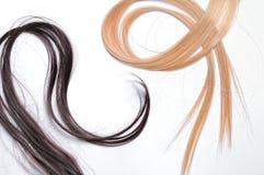 Penachos del pelo recto marrón y rubio Fotografía de archivo libre de regalías