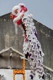 Penang Μαλαισία κινεζικό νέο Yea, ο χορός λιονταριών Στοκ φωτογραφίες με δικαίωμα ελεύθερης χρήσης