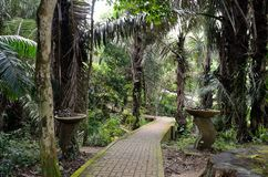 Penang Botanical Gardens Royalty Free Stock Photography