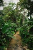 Penang Botanical Gardens Stock Photo