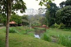 Penang Botanical Gardens Stock Image