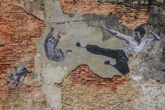 Penang Bruce Lee en het kunstwerk van de kattenmuur Stock Fotografie