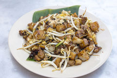 Penang Fried Rice Cake with Bean Sprouts Stock Image