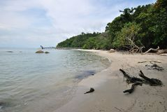 Penang Nationaal Park royalty-vrije stock fotografie