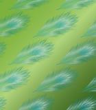 Penas azuis no fundo verde ilustração do vetor