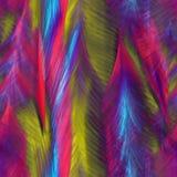Penas brilhantes abstratas dos pássaros Imagem de Stock Royalty Free