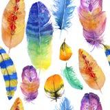 Penas coloridas Imagem de Stock Royalty Free