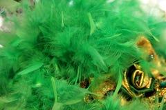 Penas da cor verde para a decoração Fotos de Stock Royalty Free