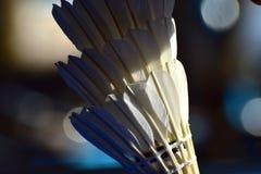 Penas da fotografia do sumário da cortiça da raquete Imagens de Stock Royalty Free
