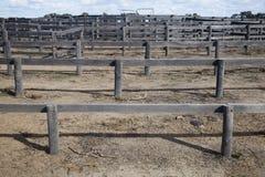 Penas de madeira do rancho de gado Imagem de Stock Royalty Free