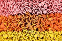 Penas de néon da cor Fotos de Stock