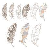 Penas de pássaro no grupo de cores pastel Imagens de Stock