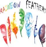Penas do arco-íris da aquarela Fotos de Stock