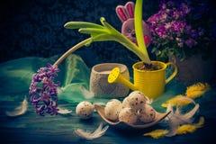 Penas dos ovos da páscoa do jacinto da composição da Páscoa Foto de Stock Royalty Free