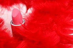 Penas e batom Imagens de Stock