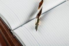 Penas e diários de fonte Fotografia de Stock