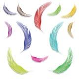 Penas nas cores ilustração royalty free