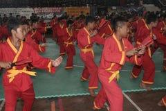 Pencak Silat Action royalty free stock photos