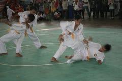 Pencak Silat Action royalty free stock photo