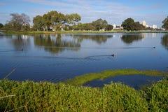 penche le lac Image libre de droits