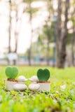Penchez le mini pot de fleurs avec la fleur de coeur sur le jardin Photo stock