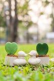 Penchez le mini pot de fleurs avec la fleur de coeur sur le jardin Images stock